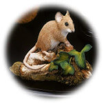 Country Artists Natural World Mouse with Ivy