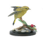 Country Artists Natural World Greenfinch On Juneberry